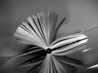 ЦБС Иркутска: «Литературные премии 2011 года. Итоговый обзор»