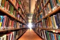 Президент раскритиковал закупку книг в библиотеки