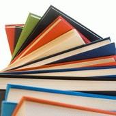 Выпуск книг по результатам 2010 года рискует снизиться на 5-10%