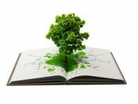 На издание книги про экологию собрано 330 тысяч рублей методом краудфандинга