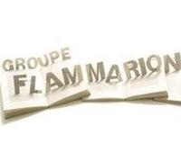 Издательская группа Flammarion может обрести нового владельца