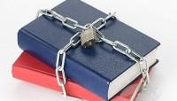Вопрос о защите литературы от пиратов Госдума обсудит осенью