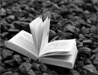 Книга уходит в «Нишу»: российское книгоиздание в постбестселлерную эпоху
