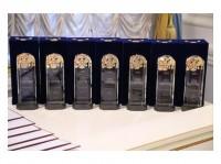 Объявлены лауреаты премии Правительства РФ в области культуры за 2016 год