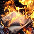 В США начали сжигать неугодные книги