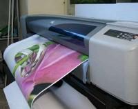 Сублимационная печать в современной полиграфии