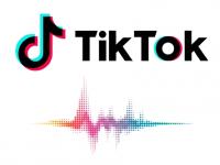 Есть ли смысл набирать подписчиков в Tik Tok?