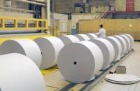 Президент Путин поручил Правительству рассмотреть вопрос о стабилизации цен на целлюлозно-бумажную продукцию